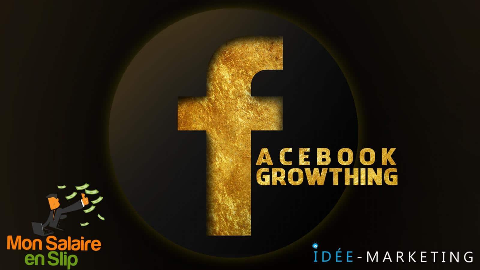 Formation Facebook Growthing Mon salaire en slip idee marketing fred zibette jean luc monteagudo